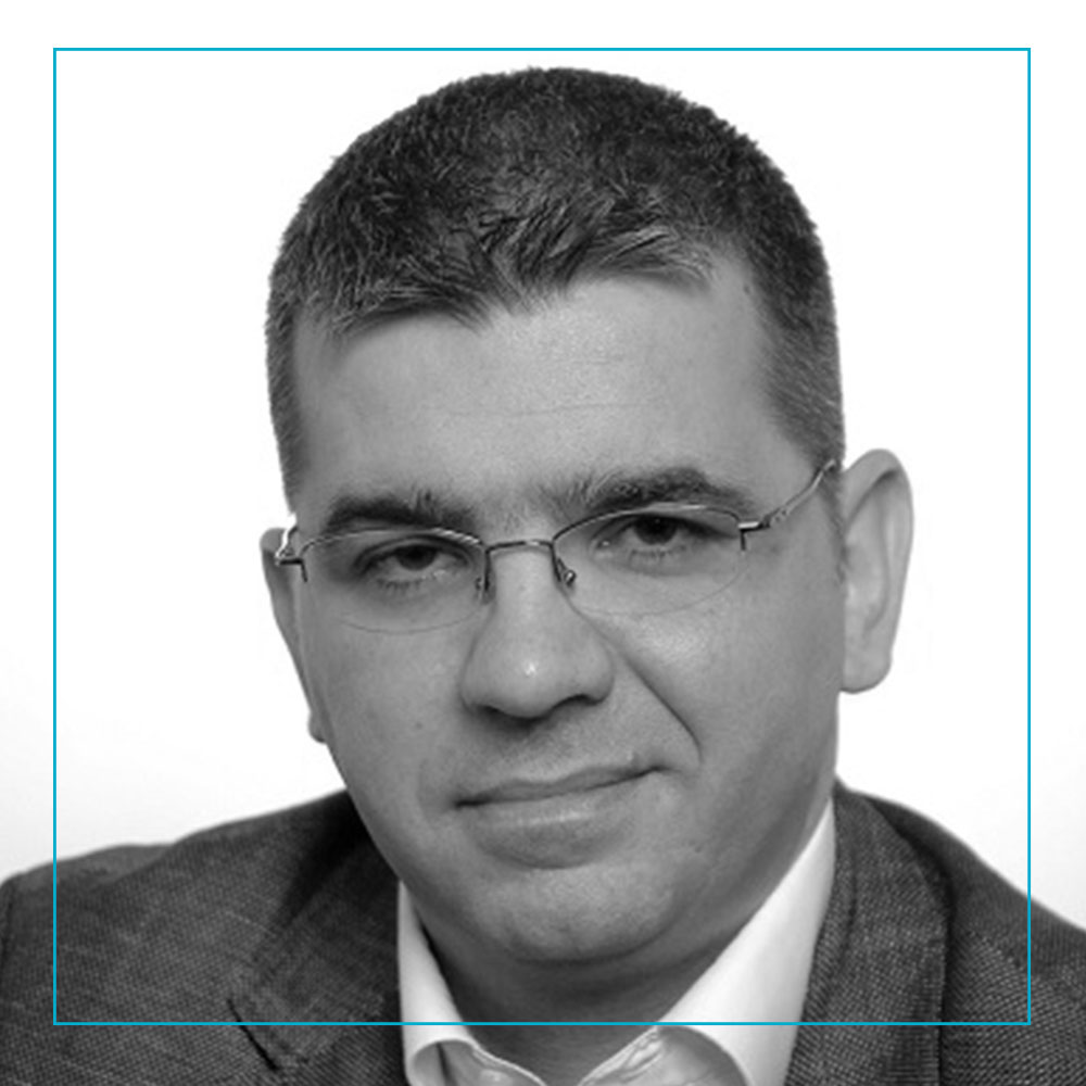 Goran Martic